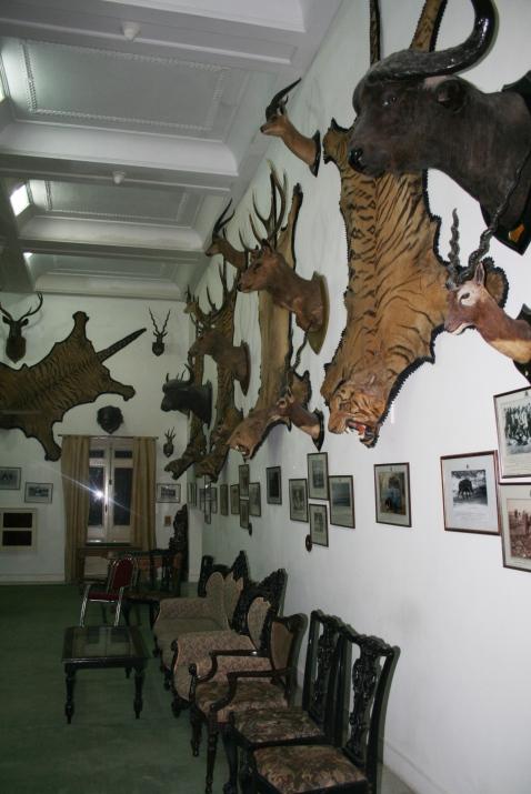sala de caza